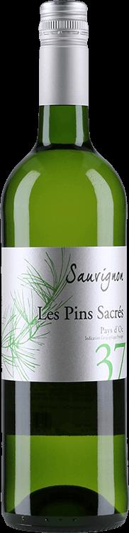 Les Pins Sacres : Sauvignon Blanc 2017