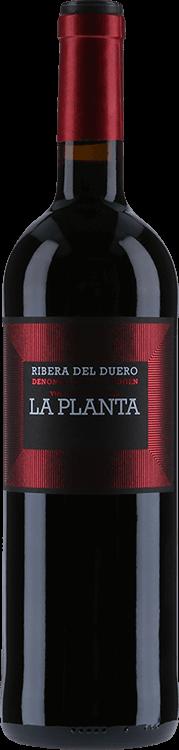 Image for Bodegas Arzuaga : La Planta 2015 from Millesima USA