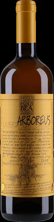 Paolo Bea : Arboreus 2013