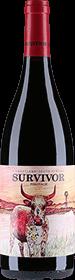 Overhex : Survivor Pinotage 2016