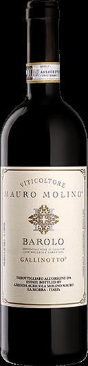 Mauro Molino : Gallinotto 2016