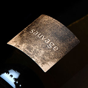 Pascal Jolivet : Sauvage 2015 - 0