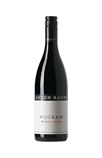 Anton Bauer : Pinot Noir 2016