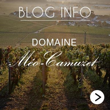 Blog Info Meo Camuzet