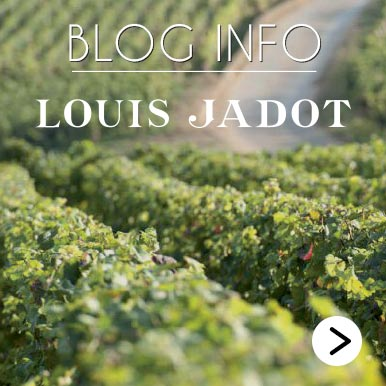 Blog Info Louis Jadot