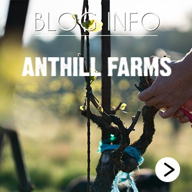 Blog Info Anthills Farms