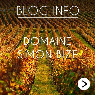 Blog Info Domaine Simon Bize