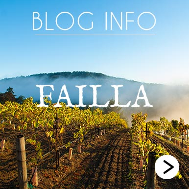 Blog Info Failla