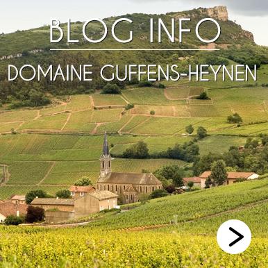 Blog Info Domaine Guffens-Heynen