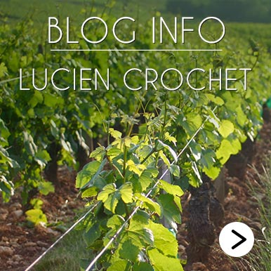 Blog Info Lucien Crochet