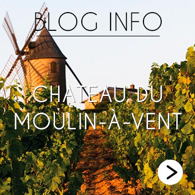 Blog Info Chateau du Moulin a vent