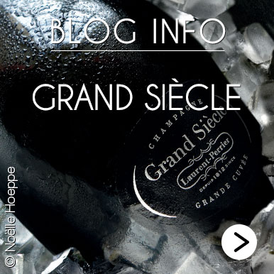 Blog Info Grand Siecle