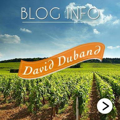 Blog Info David Duband