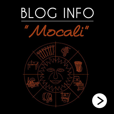 Blog Info Mocali