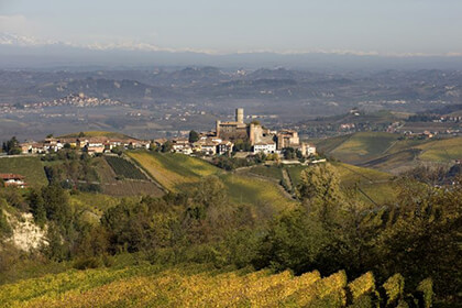 Barbaresco wines