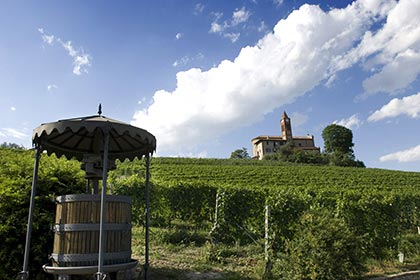 Barolo winemaking