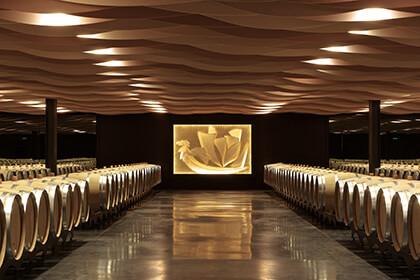 Saint-Julien wine