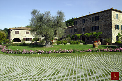 Vignoble - Brunello di Montalcino - Italie - Toscane