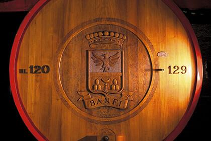 Foudre élevage - Brunello di Montalcino - Toscane - Italie