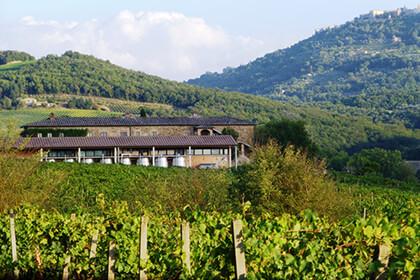 Brunello di Montalcino - Toscane - Italie