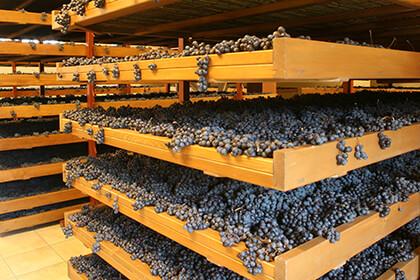 Italian wines, Giuseppe Quintarelli