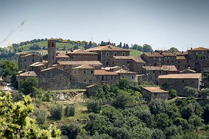 Ciacci Piccolomini wines