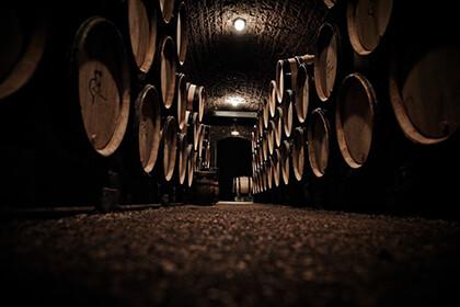 Domaine Meo-Camuzet cellar