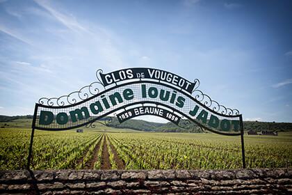 Maison Louis Jadot Bourgogne Clos de Vougeot