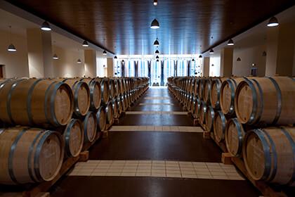 Maison Louis Jadot Bourgogne chai élevage