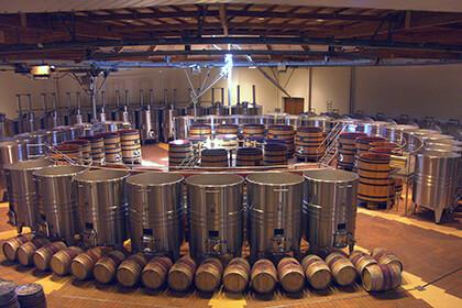 Maison Louis Jadot Bourgogne cuverie