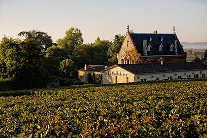 Vignoble Château La Gaffelière