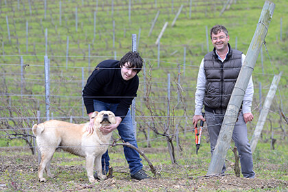 vue du vignoble de Clos Canarelli Corse-du-Sud