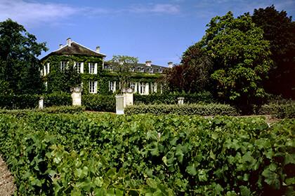 Cépages Château Talbot