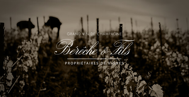Bereche et Fils Champagne
