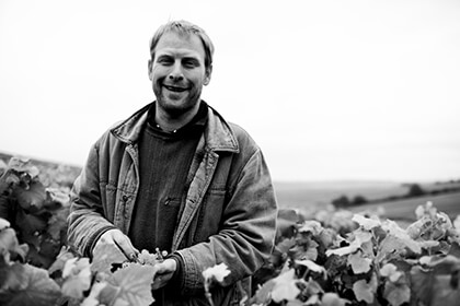 Patrick Piuze in the vineyard