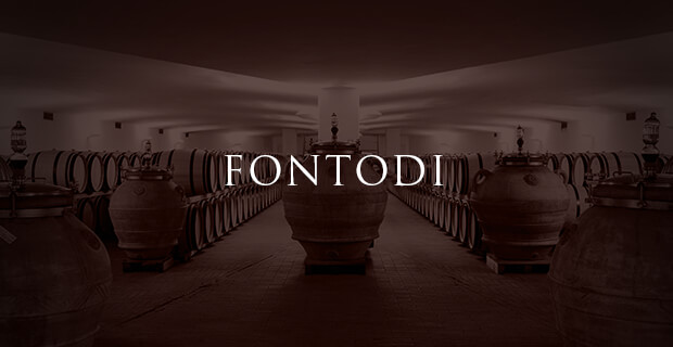 Fontodi wine