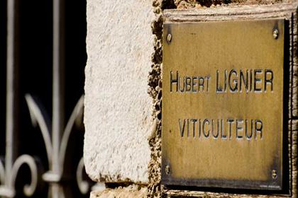 Hubert Lignier wine