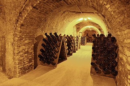 Magnums ageing in the Champage Gosset cellar