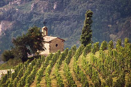 La chapelle Hermitage Maison Paul Jaboulet-Aîné