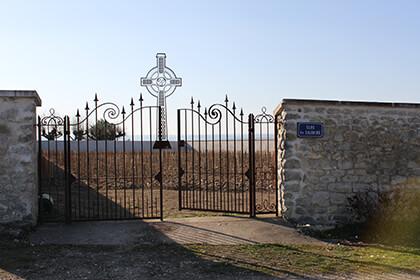 Vue du vignoble de Didier Dagueneau à Pouilly-Fumé