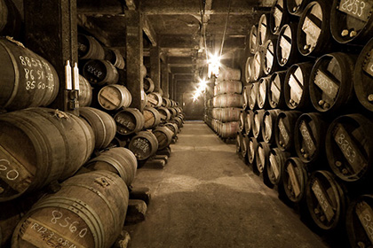 Chai à barriques Lopez de Heredia Rioja Espagne