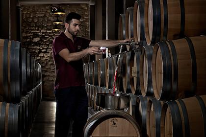 Chai à barriques La Rioja Espagne