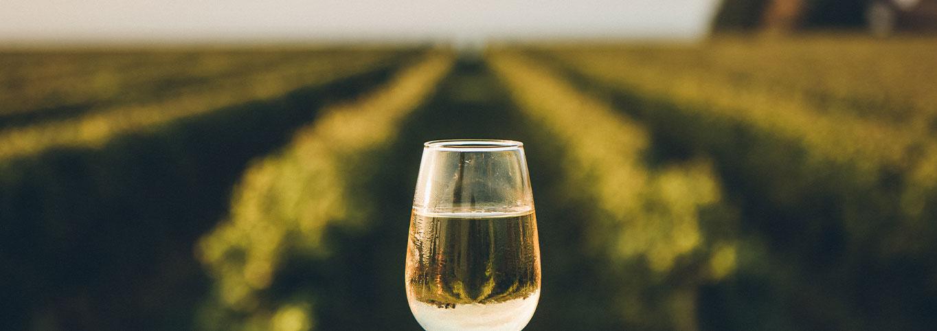 white-wine-types