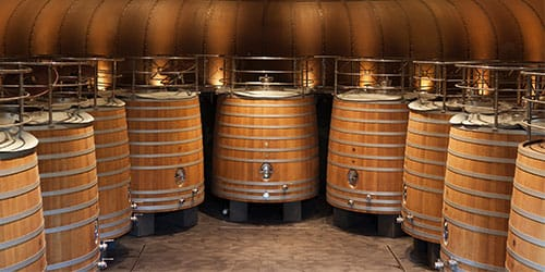 Vinification Stage